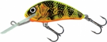 Gold Fluo Perch